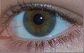 eye 16